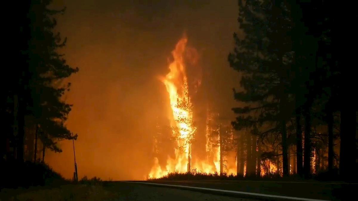 Pożar wKalifornii. Fot.YouTube